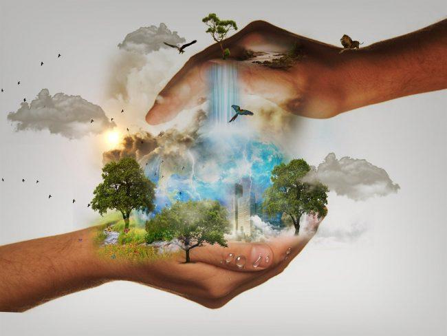 Atelier gestes écologiques