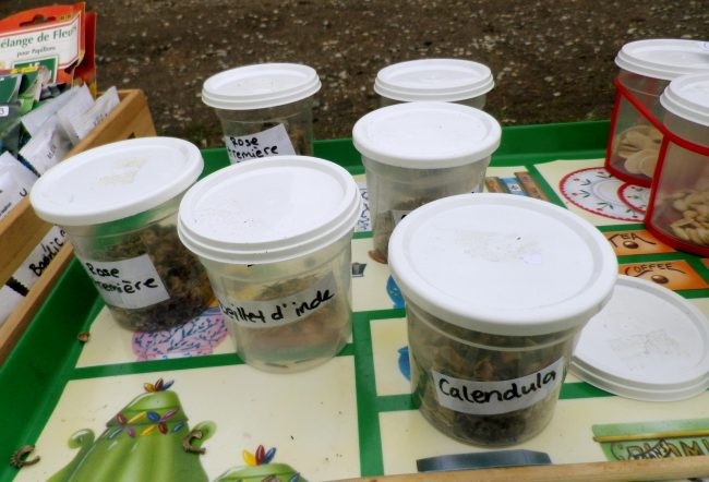 Troc-Echange-Don des Plantes, Graines et Idées