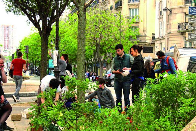Aux Arbres Citoyens ! Ecologie urbaine pour transformer nos villes