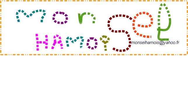 Logo Mon Sel Hamois