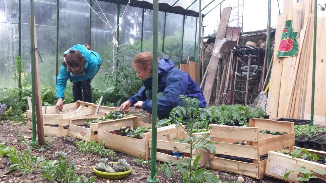 Visite du Potager et Ateliers jardin