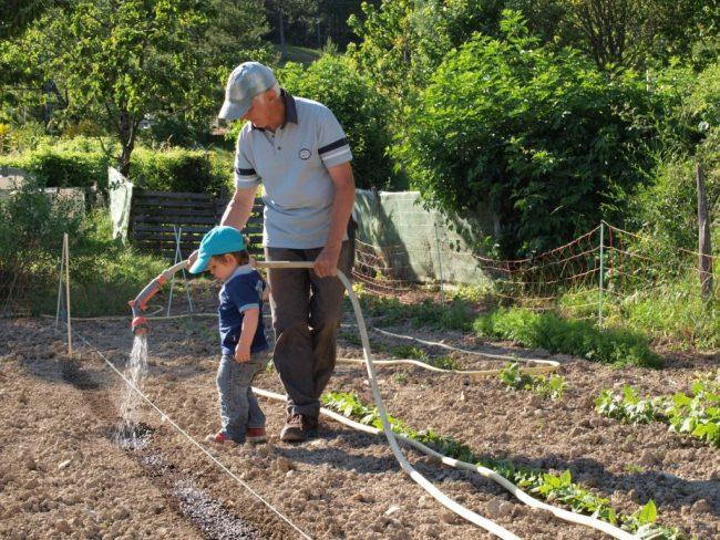Portes ouvertes aux Jardins Nourriciers et récolte des graines de fleurs