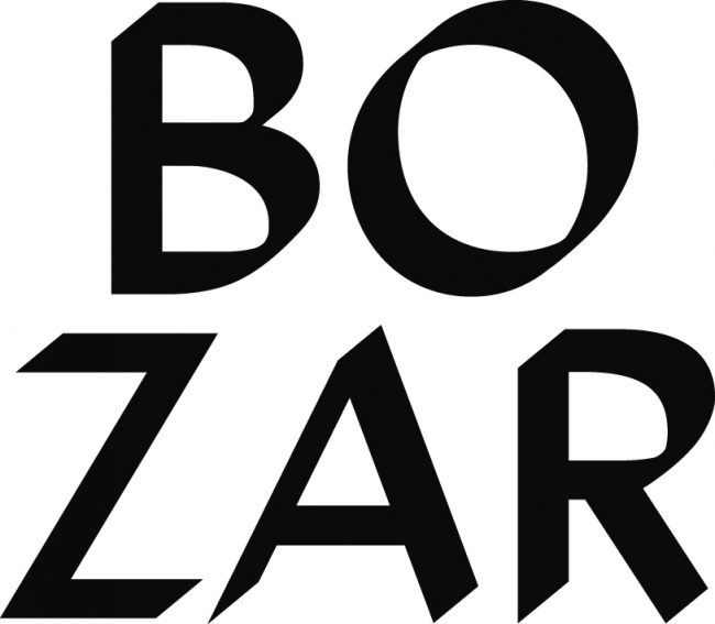 Logo BOZAR & Brussels Academy