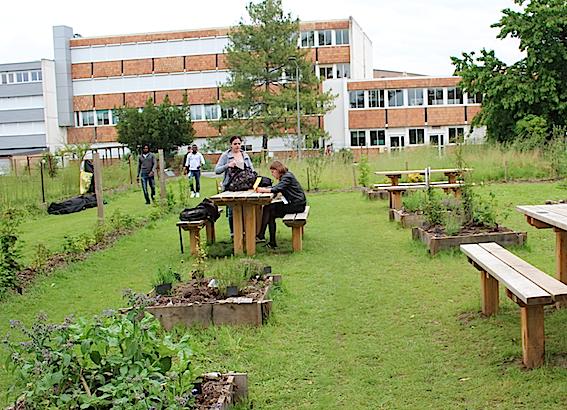 Découverte - Jardin pédagogique et Incroyables Comestibles