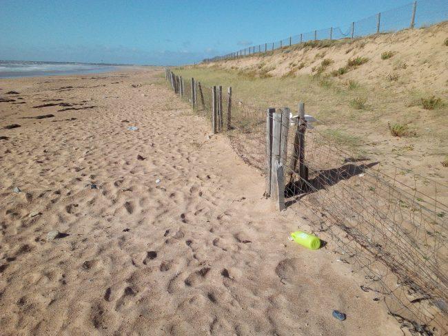 Nettoyage plage des Granges à Olonne-sur-Mer