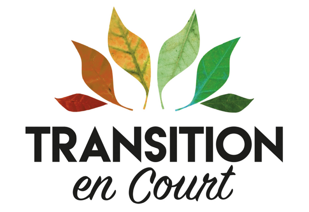 Logo Transition en Court