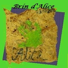 Logo asbl Brin d'Alice
