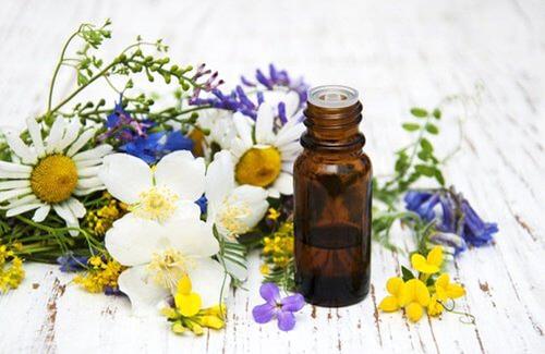 Parfumer son intérieur sans produits chimiques