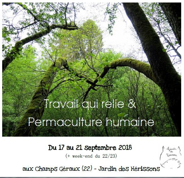 Stage «Travail qui Relie et Permaculture Humaine»