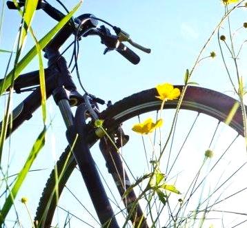 Balade cyclistes familiale