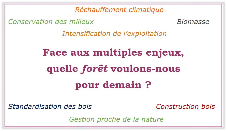 Rencontre citoyenne : Quelle forêt voulons-nous pour demain?