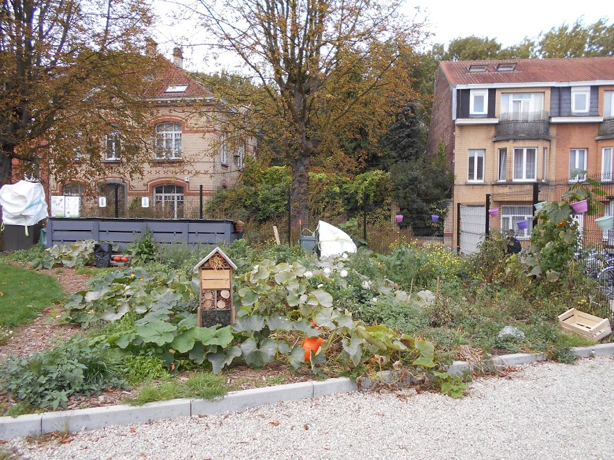 Le compost de quartier Ecollecto à JETTE ouvre ses portes !