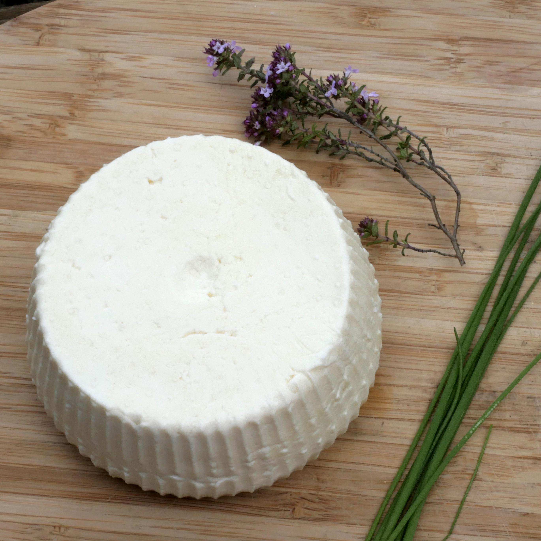 Atelier fromage et ricotta bio