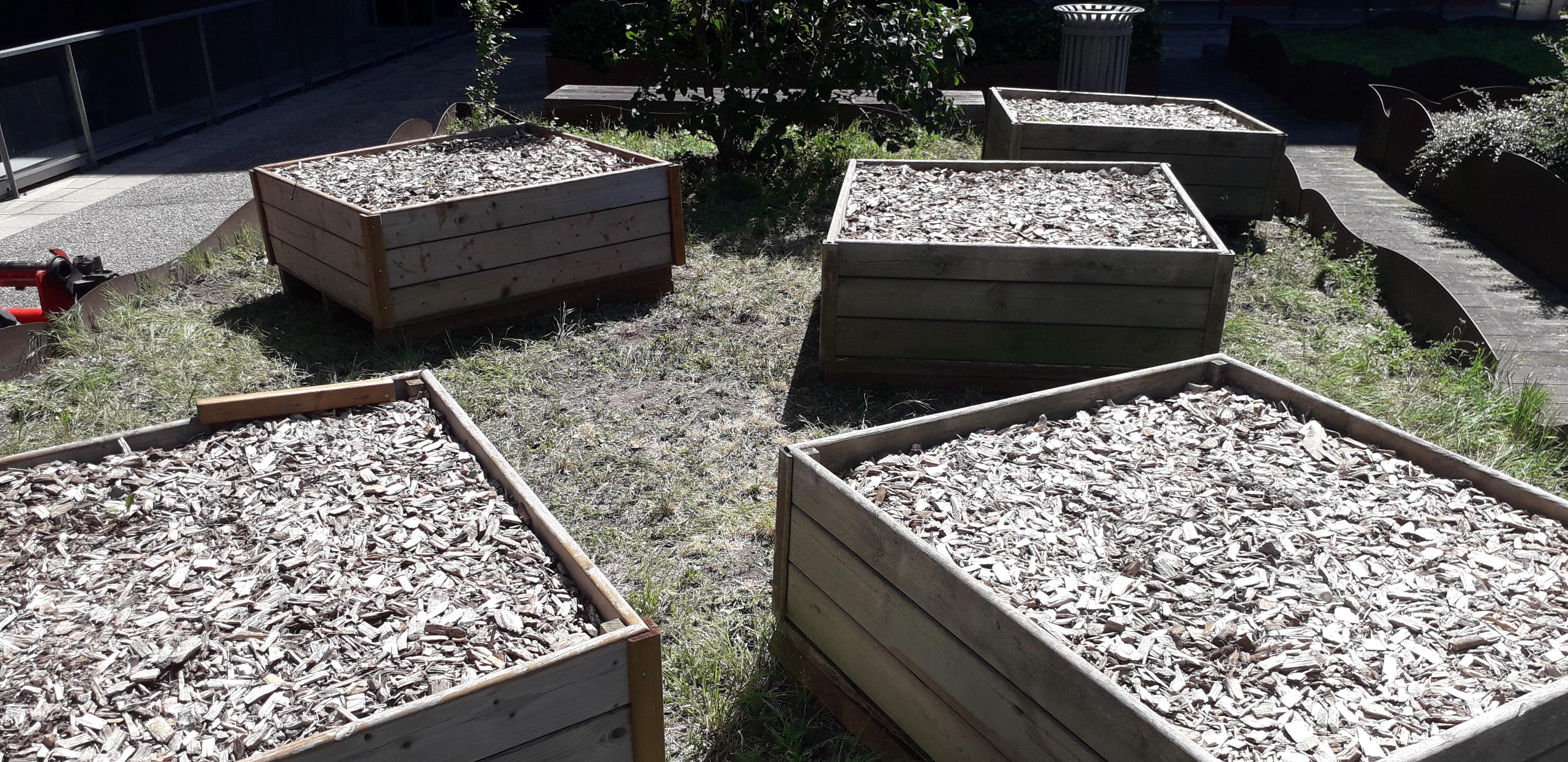 Projet ENERULCO : Inauguration du jardin partagé et atelier fabrication d'un hôtel à insecte, participation au rallye mobilité