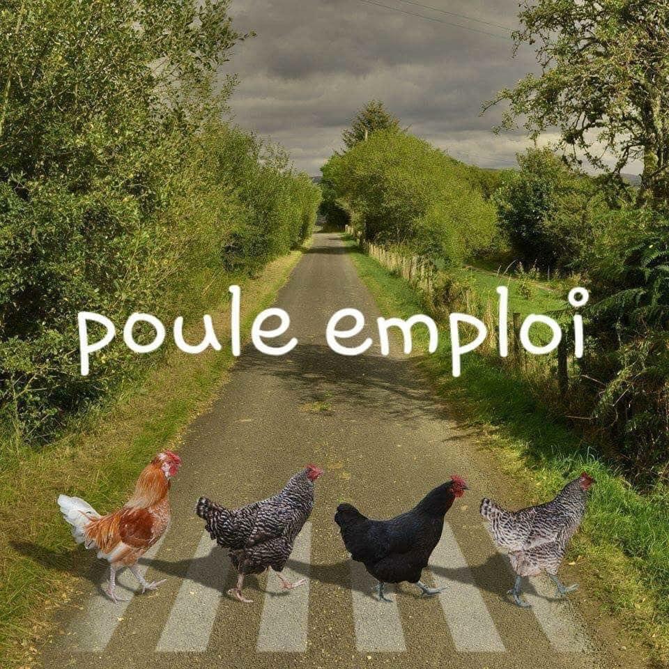 Café Transition des Incroyables Provençaux