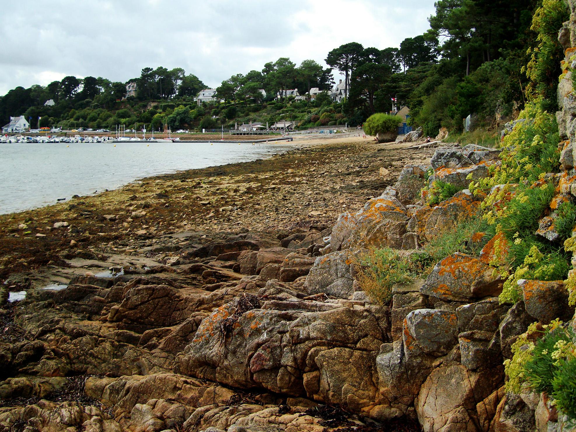 Nettoyage de plage au Port d'Arradon
