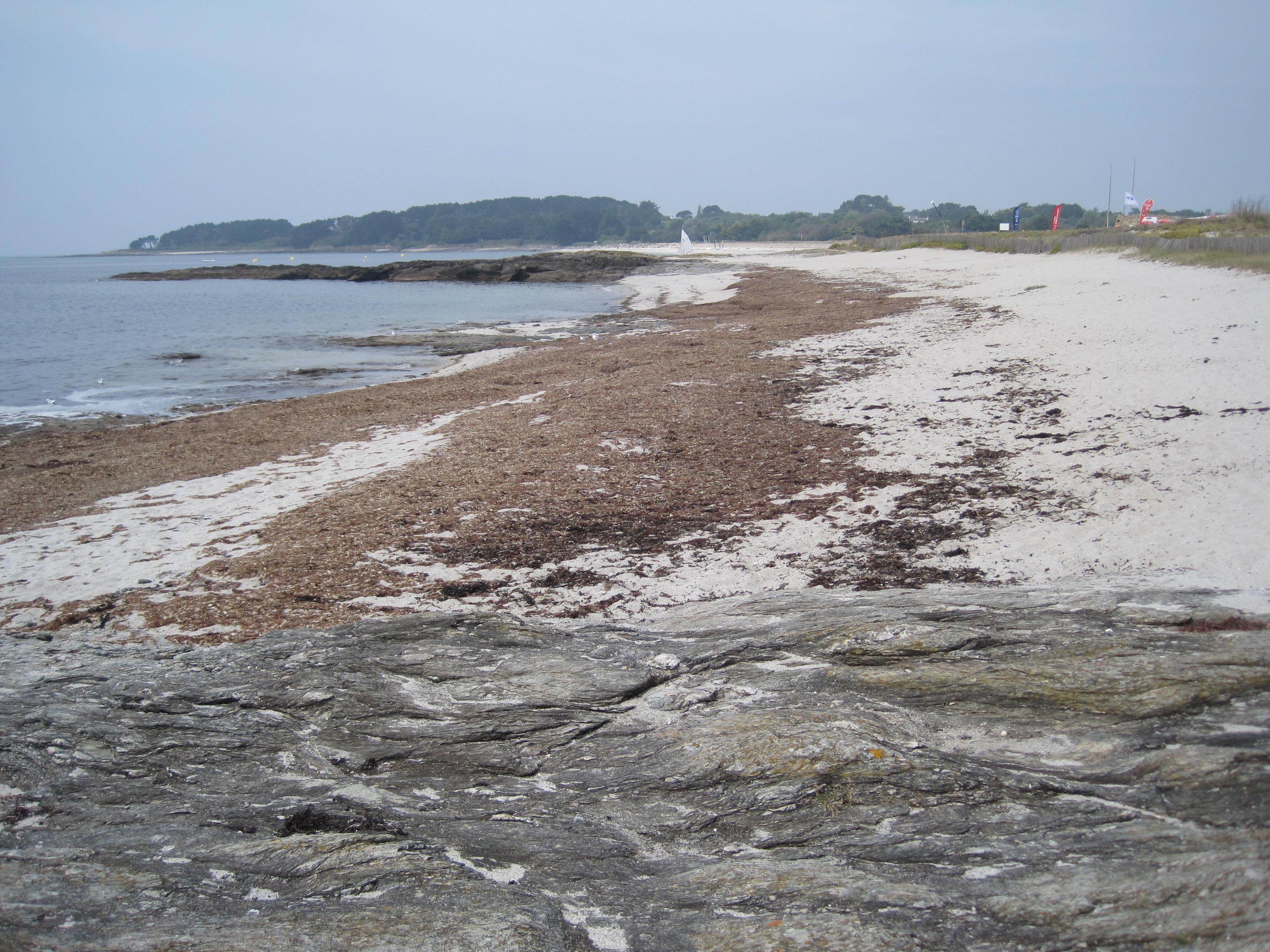 Nettoyage de la plage Saint-Jacques (Sarzeau, 56)