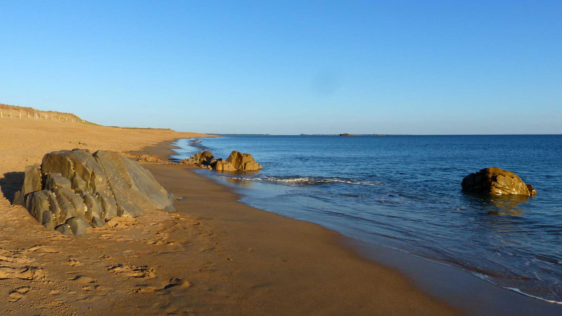 Nettoyage de plage à Erdeven