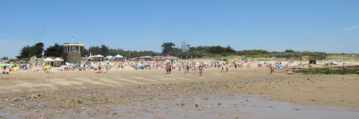 Nettoyage plage de la Normandelière, Brétignolles-sur-Mer