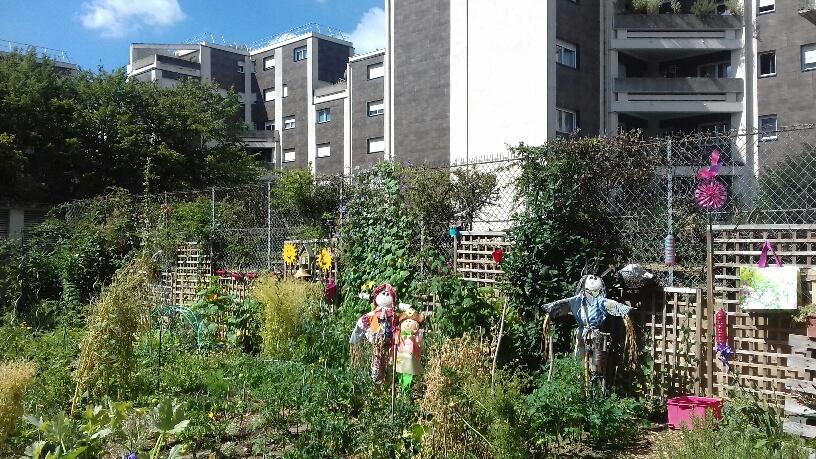 Balade urbaine : jardins partagés du quartier Jean Zay