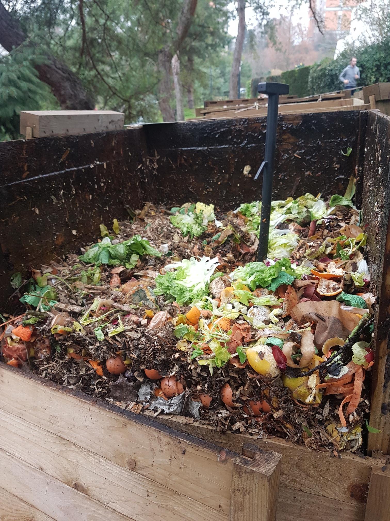 Inauguration de site de compostage collectif et formation compost