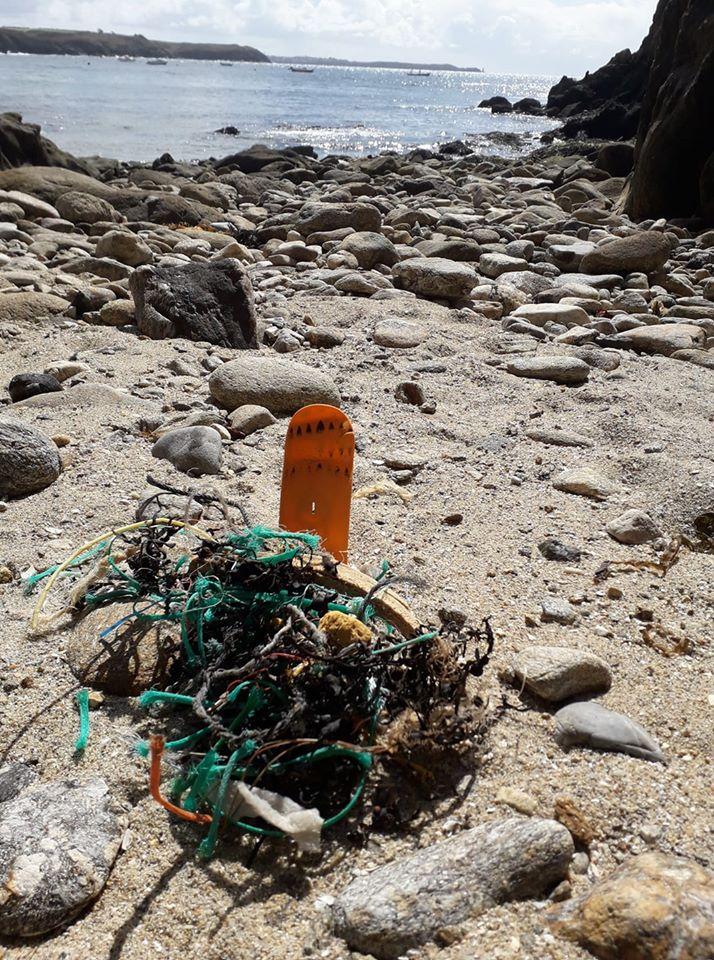 Nettoyage du littoral, ramassage de déchets