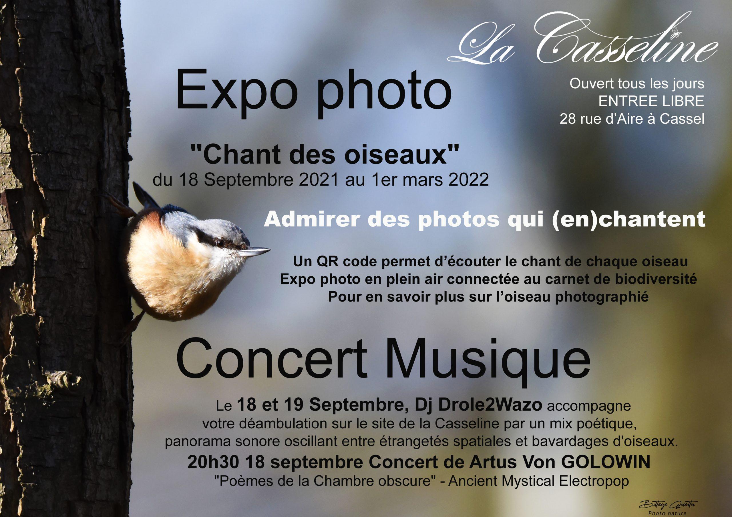 expo photo et concert «chant des oiseaux»