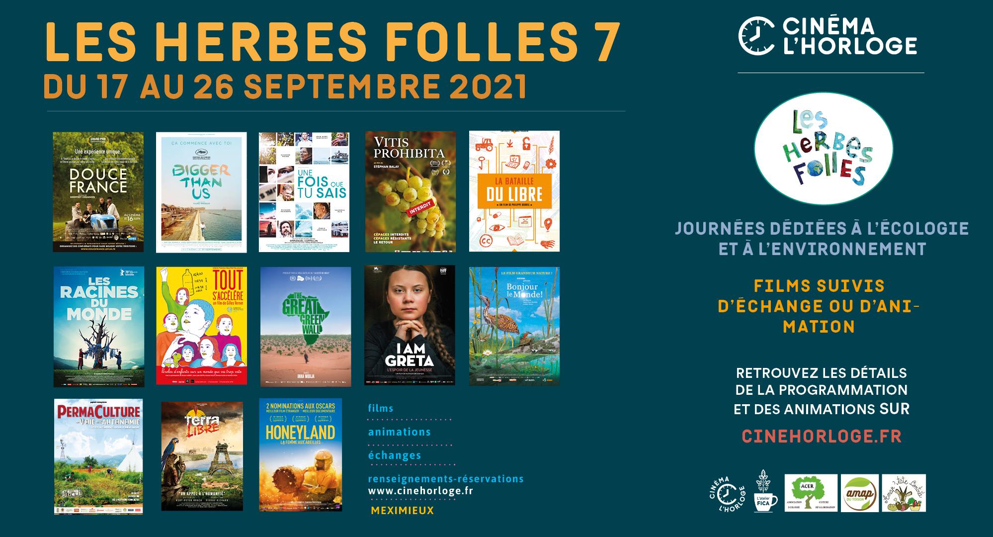 Festival Les Herbes Folles 7